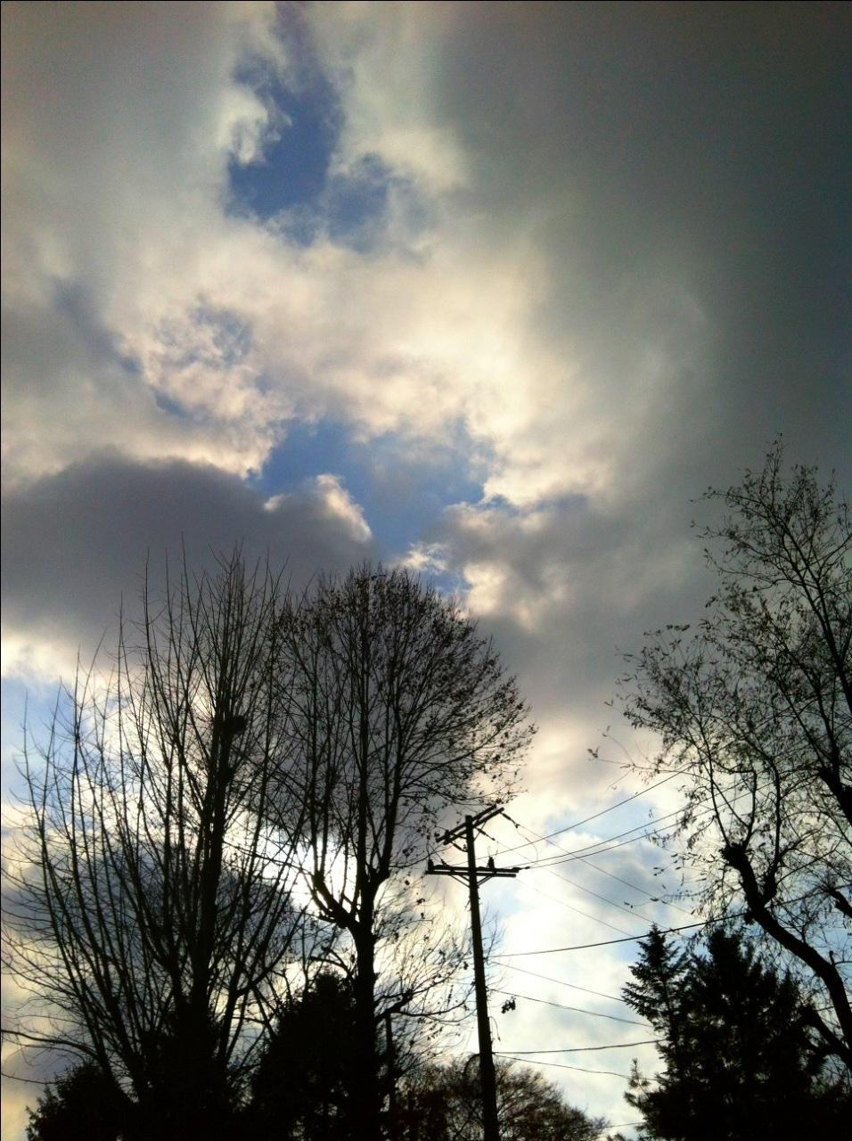 20111119-150533.jpg